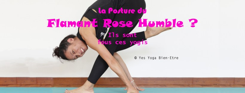 Yoga posture fun flamant rose humble
