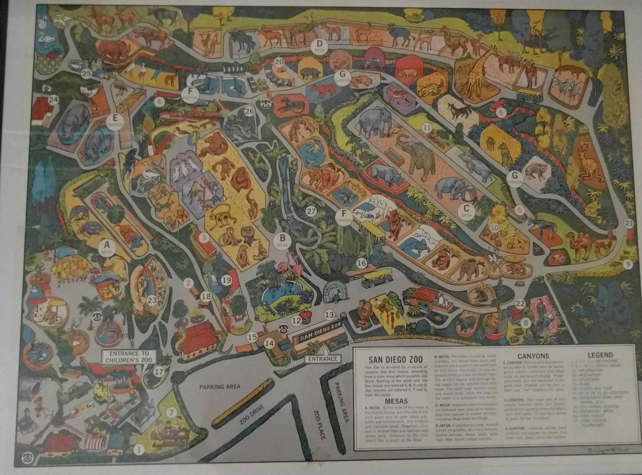 Vintage San Diego Map.Vintage San Diego Zoo Maps Yew
