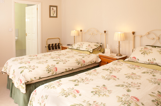 B&B-Berrow-Twin-Double-Ensuite-Room
