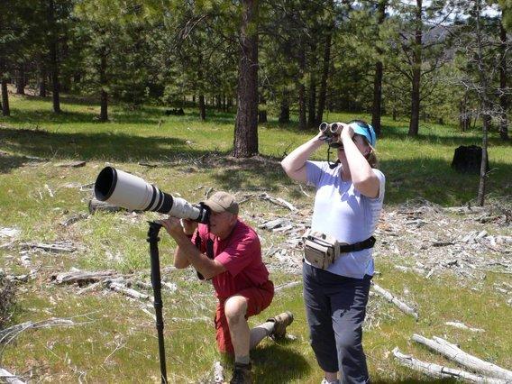 Yosemite Birding Tours Lukas