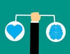 intelligence cerveau/coeur