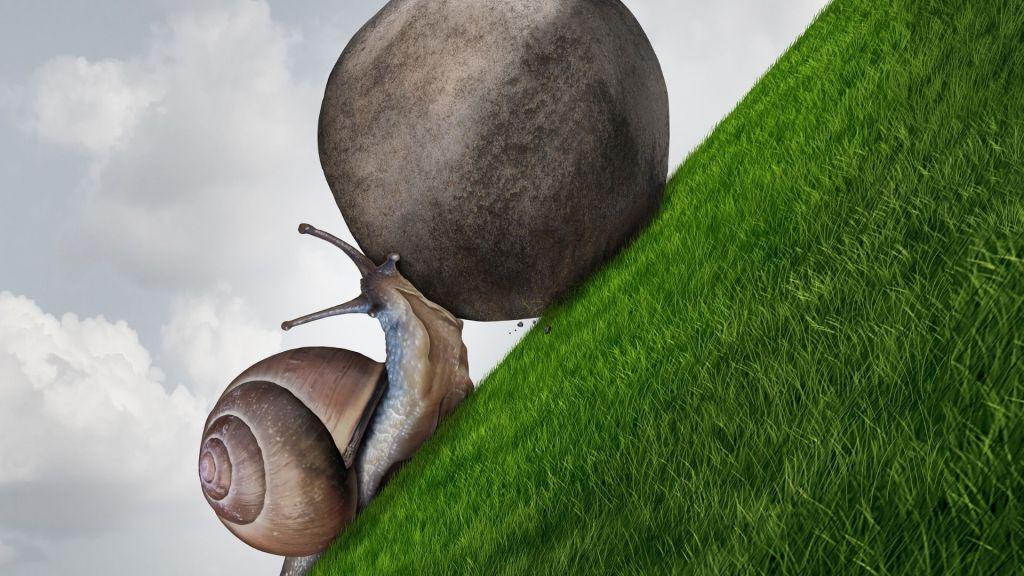 escargot qui pousse un rocher sur une colline