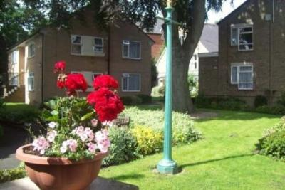 Flowers and buildings at Carrs Lane Gardens
