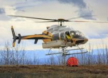Forestry helicopter services