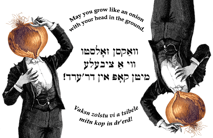 Yiddish I Love You