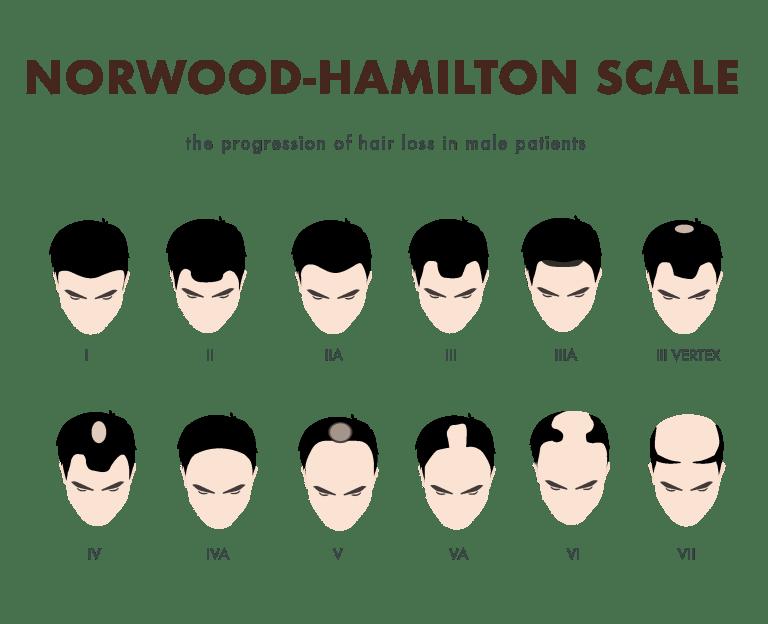 34667621-0-norwood-hamilton-sca
