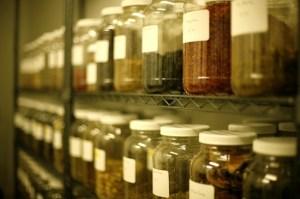 Herb Pharmacy