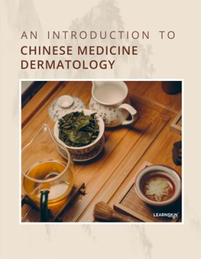 The front cover of our e-book, An Introduction to Chinese Medicine Dermatology