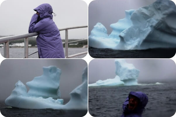 blog74 Icebergs first
