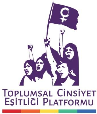 ToplumsalCinsiyetEşitliğiPlatformu