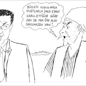 serhan9