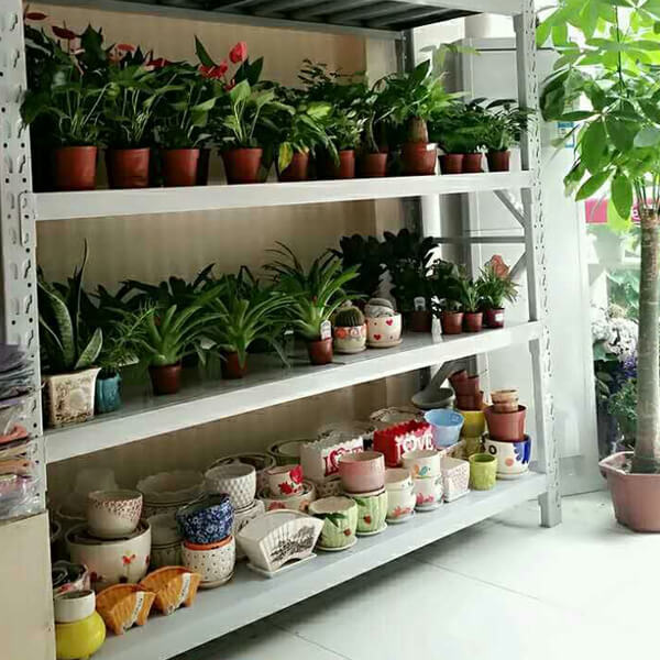 Other Shelves