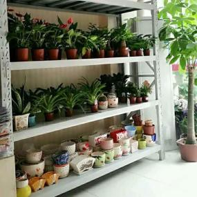 other shelves-13