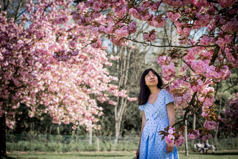 ~ Balade au parc de Sceaux sous les cerisiers fleuris (1/2) ~