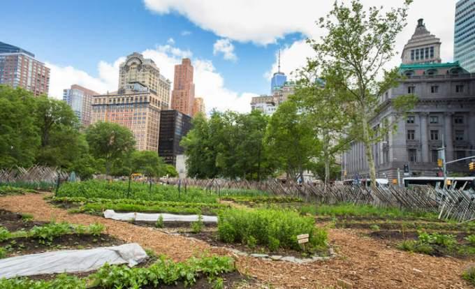 ニューヨークのマンハッタンの都市型農園 by GreenBiz.com.jpg
