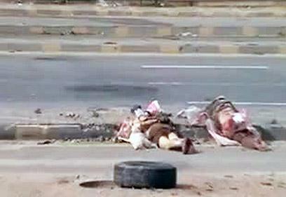 אסד מתקשה לרסן את מלחמת האזרחים. סוריה (צילום: AFP PHOTO / YOUTUBE)