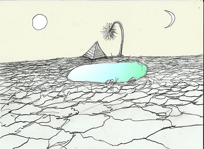 אין לי יום אביב ואין לי לילה, דימוי דיגטלי, זמיר שץ, יוני 2013