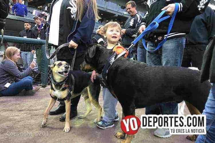White Sox Dog Day-Cleveland