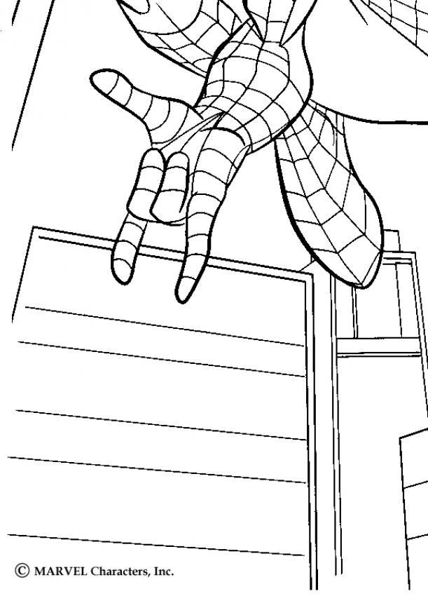 Dibujos Para Colorear Spiderman Parker Y El Duende Verde