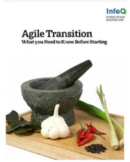 Los mejores 33 libros gratuitos y pagos ágiles Gestión ágil Transición ágil