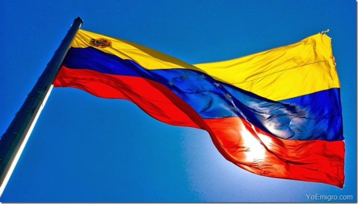 vete-de-venezuela-bandera-emigracion