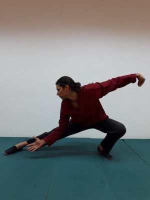jun miguel contreras - formación yoga online tai chi y chi kung
