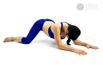 Downward Facing Frog pose • Adho Mukha Mandukasana