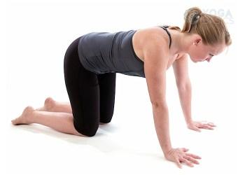 seated head to knee pose • yoga basics