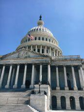 Environmentalism as a Yoga Practice - U.S. Capitol Building