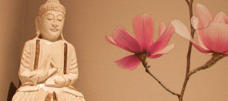 Buddha 1000x500