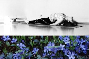 Atelier de Yoga en Montagne               Samedi 22 mai 2021