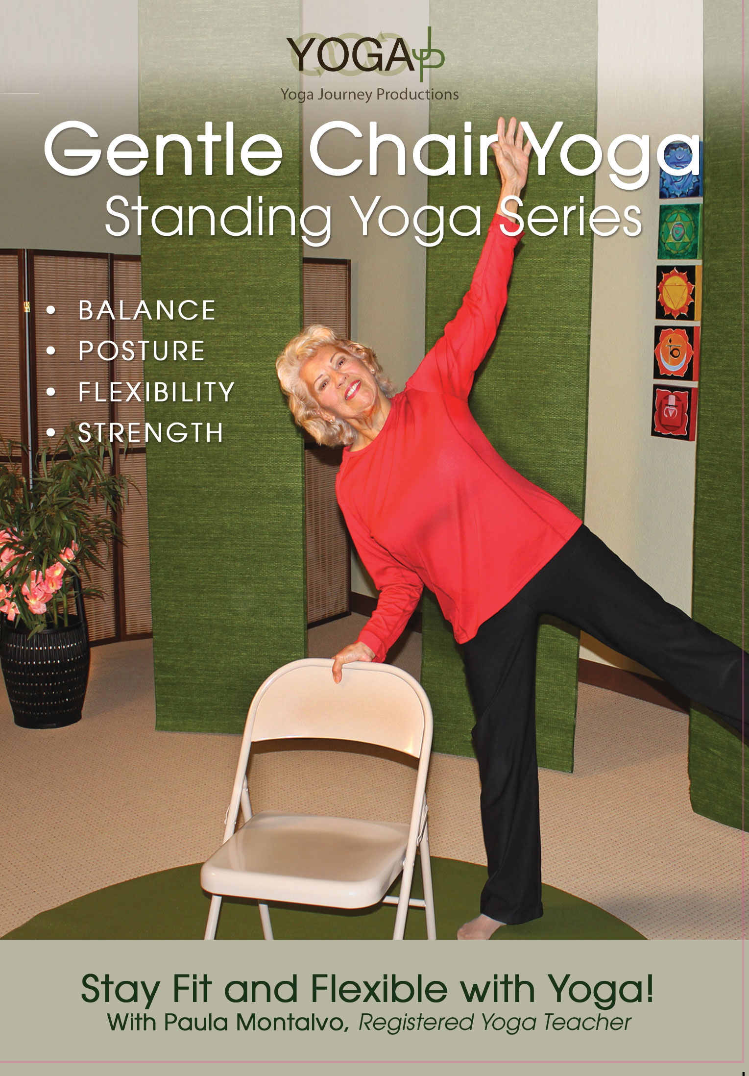 Gentle Chair Yoga  Standing Series DVD  YogaJP