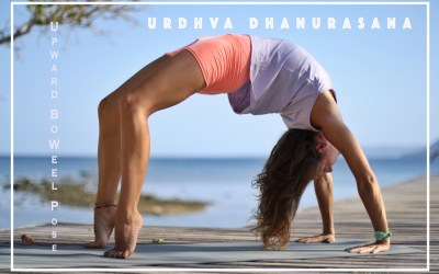 THURSDAY TUTORIAL: Urdhva Dhanurasana