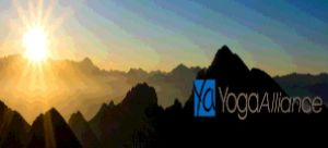 YogaAllianceTaxes