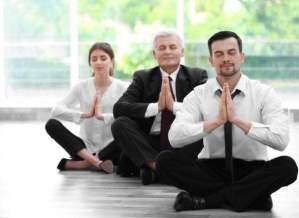 Mindful Business   Indie Yoga, Yoganomics, Independent Yoga, Brian Castellani, Sarah McLaughlin, Heidi McGehee