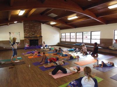 International Day of Yoga  Yoga Rascals
