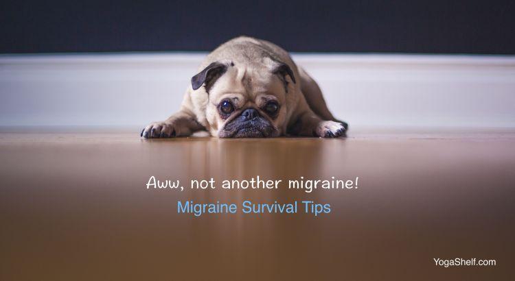Migraines: YogaShelf Survival Tips