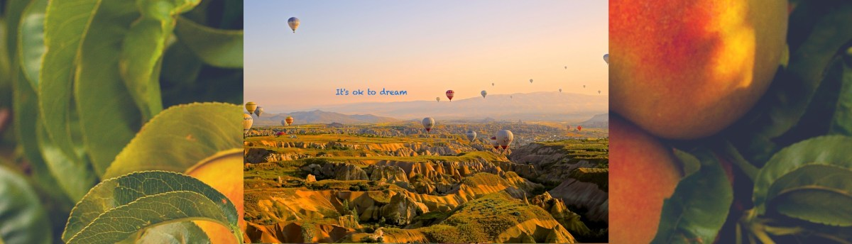 It's Ok to Dream: YogaShelf Tips