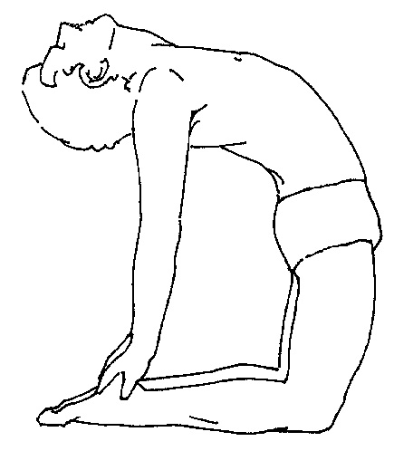 Compare the function, application and risks for Uṣṭrāsana