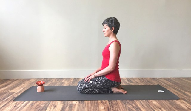 Seated-Pose