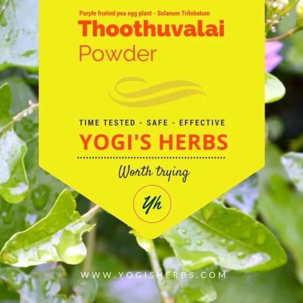 Thoothuvalai_Dec16