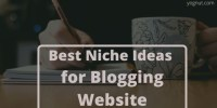 Top 10 Best Niche Ideas for Blogging Website