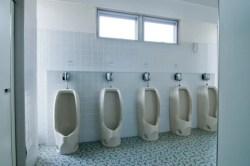 トイレで最も雑菌が多いのはトイレブラシです!