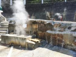 【プロ必見】カルシウムスケールと尿石の洗浄に超オススメな洗浄剤!
