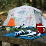 Summer Camping: An Eco Travelogue