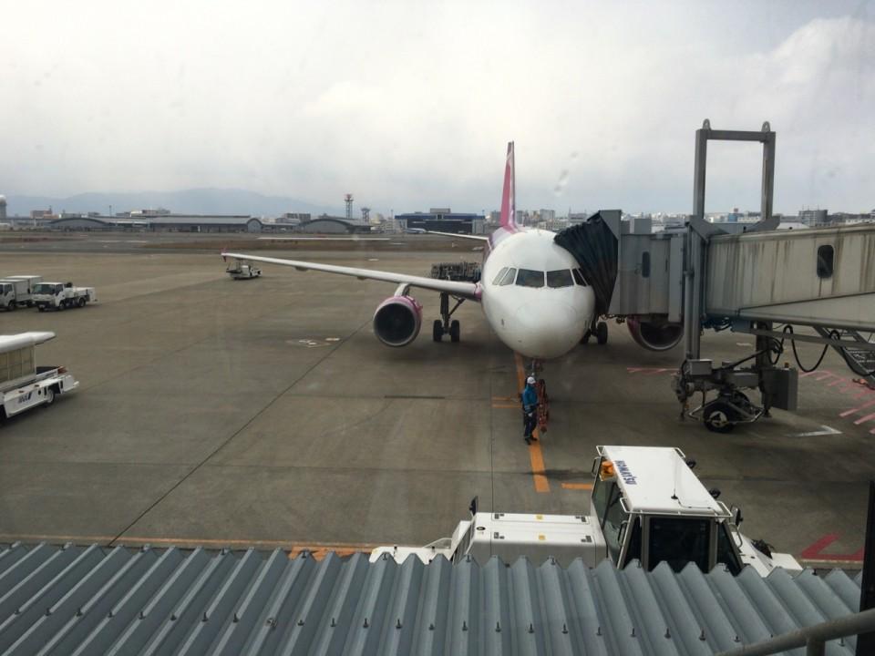 今回搭乗するpeachの航空機