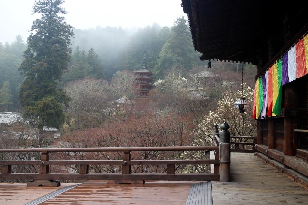 月ヶ瀬・奈良1泊の旅