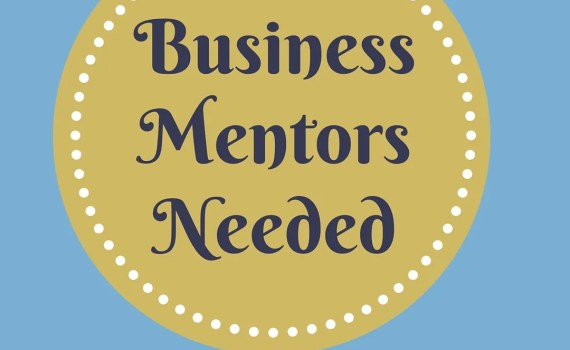 Business Mentor Needed