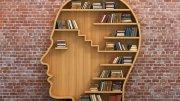 Knygų lentynų idėjos