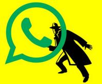 whatsapp admin
